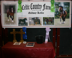 Galway Kellies ribbons